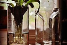 Ideas for glass recycling