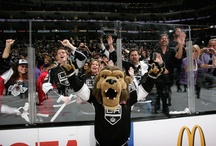 Bailey / Follow Bailey and the Ice Crew on Twitter, Facebook, and now Pinterest! / by LA Kings