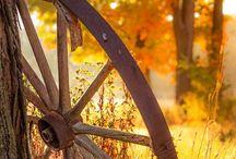 Herfst / Vallende blaadjes, mooie kleuren, dekentjes, Openhaard weer aan, heerlijk!