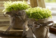 hessian container