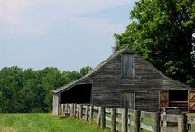 BARNS / Buildings originally used for livestock or storage standing grand & stately showing greatness in size or importance. Or in some cases, just reflect the yesterdays.  / by Diana Carson