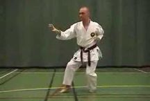 Shorin Ryu Karate Do