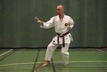 Shorin Ryu Karate Do