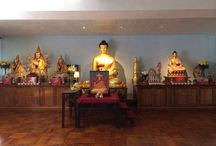 Our Centre / A peaceful sanctuary in the heart of Hong Kong