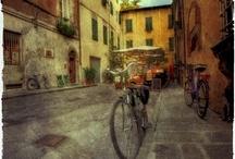 Lucca / Lucca - Bed and Breakfast Camaiore Villa La Bianca
