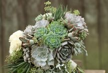 Succulent Weddings flowers