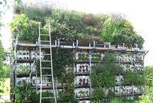 vertical gardens / by Tender Green
