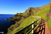 Norther Ireland / Causeway walk along Giant's Causeway, Carrick-a-Rede, White Park Bay etc