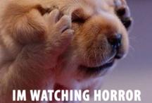 horror movies / by Serena Efford