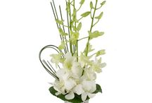 First Holy Communion Miami / First Holy Communion is a very special rite of passage, a celebratory day for friends and family to share.   Commemorate this special occasion with unique and beautiful arrangements from Trias Flowers.