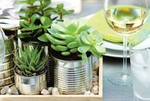 Plantes / by Docteur Cuddy