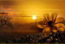 Mija gyönyörű képei