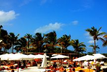 Miami Clubs and Nightlife / Miami night clubs, nightlife and VIP services at Club Nikki Beach Miami, Club SET, Mango's Tropical Cafe - Miami, Club Story - Miami - Club LIV - Miami, Club Space - Miami, Club Dream -- Miami, and many more.