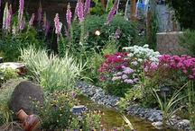 HomeTalk Gardening Inspiration / Contest / by Gretchen Everman