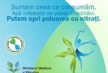 """Constanta - Workshop """"Controlul Integrat al Poluarii cu Nutrienti"""" / Ministerul Mediului şi Pădurilor vă invită la un workshop, cel de-al şaselea,  în cadrul Campaniei de sensibilizare şi conştientizare a Proiectului """"Controlul Integrat al Poluarii cu Nutrienţi"""".    Workshop-ul se adresează autorităţilor locale din Bazinul Hidrografic Dobrogea-Litoral, din care fac parte judeţele Constanţa, Tulcea şi Brăila .   Evenimentul se desfăşoară în zilele de 10 şi 11 iulie a.c,  la Hotel  Oxford dinConstanţa."""