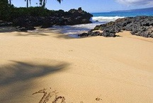 Beaches in Hawaii / A compilation of legal beaches to get married on in the State of Hawaii. This album includes the islands of Maui, Kauai, Oahu, Hawaii, Lanai, Molokai. / by First Class Weddings