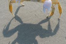 skygger og silhouetter