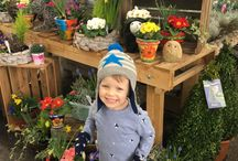 Places in Harrogate to go with Kids / Some suggestions for mums and dads on where to go with your kids in Harrogate
