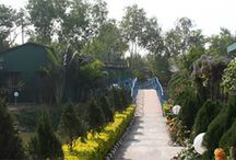 United-21 Resort Sunderbans / United-21 Resort Sunderbans provides luxury resort in Sunderban at low price. Find luxurious Eco-friendly resort in Sunderbans with advanced facilities and great services.
