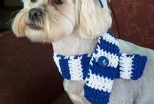Knit and Crochet for Pets / Free knitting and crochet patterns for animals.
