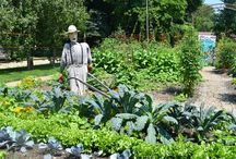 Gardens to visit with kids