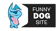 Funny dog site
