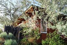 Gardens / The gardens at Ridgewood Event Center and other gardens we love.
