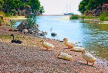 Antalya Kemer Urlaub / Türkei Antalya Kemer Urlaub Fotos,  From http://www.turkeiurlaubhotels.com/antalya/kemer/