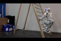 AI-Robotics / Pictures about robots