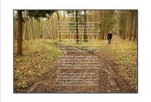 poems / by Andrea Markiewicz