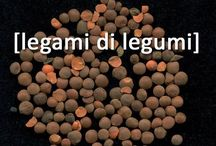Legami di Legumi - i #legumi nella dieta alpina #pulse / Due giorni, il 25 e 26 il giugno, di riflessione, degustazione, scambio di semi, attività culturali, espositive e didattiche sul ruolo e sull'importanza dei legumi nella dieta alpina, sugli ecotipi maggiormente diffusi e sul rapporto tra coltivazione di legumi e paesaggio agricolo terrazzato.