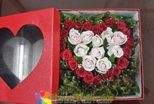 Hanoi Valentine's Day Flowers / To make send flowers to Hanoi on Valentine's Day, we would like to suggest best flowers in Hanoi Flower Shop. Sample the best Valentine's Day roses, boxed flowers, bouquets and long roses from Roses Only - one of Florist Hanoi.
