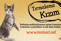 Mamaci.net | Kedi Marketi / Kedileriniz için aradığınız her şey Mamaci.net'te. mamalar, ödüller, mama ve su kapları, fırçalar, taraklar, şampuanlar, tırmalamalar, oyuncaklar, kumlar, tuvalet kapları, taşıma kapları, yataklar, kapılar, tasmalar ve bunun gibi bir çok ürün, en uygun fiyatlarla Mamaci.net'te.