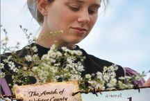 Amish of Webster County / Set in Seymour Missouri - the three books and area.  Story board for Healing Love, Surrendered Love, and Awakened Love
