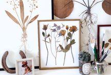 Botanica : Photo : Frame / Idéias pra quadros de fotografias de flores e plantas