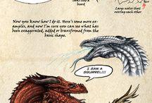 Disegnare Drago