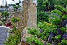 gneis garden / kamień naturalny do ogrodu, kruszywa dekoracyjne, kora kamienna, płytka, głazy ogrodowe, szpilki, otoczaki, stone bark, garden boulders, monoliths, pebbles,