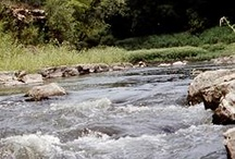 Iowa's Water & Land Legacy - Acts of Conservation / Iowa's Water & Land Legacy is about Iowa's outdoors.  Our scenic landscapes, our rivers/lakes/streams, and our agricultural heritage.  He we share images that make Iowa special.  Learn more at http://www.IowasWaterAndLandLegacy.org.