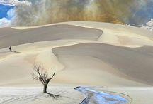 Desert / Sand, dunes, rock, ice desert. Le désert dans tous ses états / by E M 888