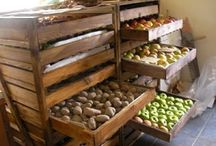 Harvest Storage / by Heidi - We Are Loving This Life
