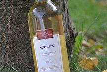 Bílá vína / White wine / víno