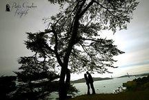 Engagement session in San Francisco / Servizio fotografico professionale