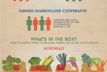 Gardening - Farm to Table