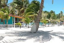 Welcome to Blue Marlin Beach Resort / Retreat to idyllic palm-fringed white sand beaches and turquoise coral lagoons.