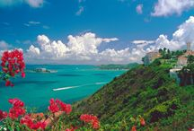 Puerto Rico-Boriken-Isla del Encanto / by Luz Morales