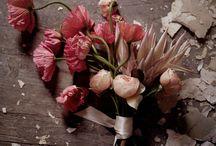 Inspiração com cor e cheiro