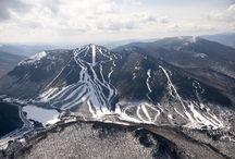 Skiing / by Lauryn Eady