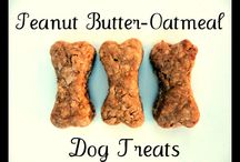 For my Furr babies / treats and things for my Dude, Booboo, Clark, and Lois / by Naomi Handleman