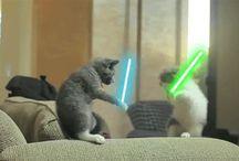 -Star Wars-