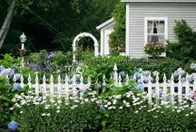 Home - Dream Outdoors